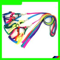 Quality Colorful Rainbow Color Pet Leash and Harness wholesale