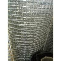 "Quality 1/2"" Welded Screen, Rust Resistant Stainless Steel 304/316 Welded Mesh wholesale"