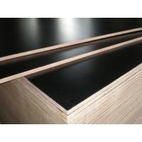 China Competitive price film faced plywood ,melamine film faced plywood with best quality on sale