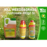 Quality Glyphosate 41% SL Selective Herbicide Control of perennial weeds  Cas No. 1071-83-6 wholesale