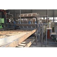 China Rotary Type Paper Egg Tray Production Line Big Capacity 1500-5000pcs/h on sale