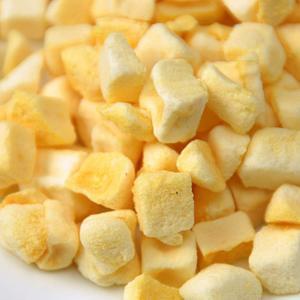 China Cheap Freeze Dried Mango Fruit Diced Freeze Dried Food Wholesale on sale