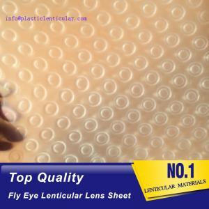 China PLASTIC LENTICULAR 3d 360 lenticular printing sheet PP fly-eye lenticular sheet lenticular lens arrays on sale