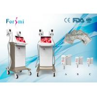 China high vaccum CE Certificate cryolipolisis lose weight machine / fat freezing machine home device cryolipo salon use on sale