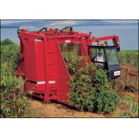 China Rice combine harvester 0086 13613847731 on sale
