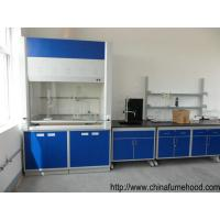 Quality China Cheap Laminar Flow Fume Hood in Laboratory Ventilation System wholesale