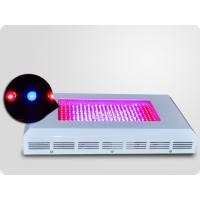 Quality 300w Hydroponic Lamp, Led Plant Growing Lights For Flowers And Plants wholesale