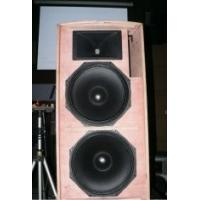 China 10''neo Woofer 150W 8ohm 270*521*288mm Professional Gold Karaoke Equipment For KTV Room on sale