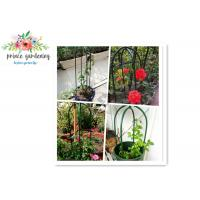 Quality Eco Friendly Solid Durable Green Ushape Pipe Flower Support Garden Plant Supports wholesale