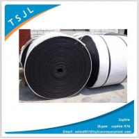 Buy cheap Tear-Resistance Multi-ply Nylon Conveyor Belt from wholesalers