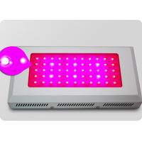 Quality Energy Saving 55*3w Rectangular Led Plant Growing Lights, Grow Lights Panel For Indoor wholesale