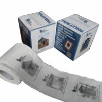 Quality printed toilet paper roll 250 sheets 100% virgin pulp advertisement toilet tissue wholesale