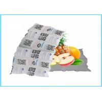Quality Easy Packed Instant Cold Pack / PE & Nylon Large Reusable Ice Packs wholesale