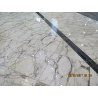 Quality Beautiful White Color Natural Marble Floor Tile 1.8 Cm Thickness Big Slab wholesale
