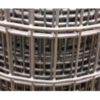 """Quality Welded Wire Mesh Type SS304, 1-1/2×1/2"""" Welded 0.063"""" Wire 48"""" Wide wholesale"""