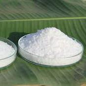 China White Natural Food Additives Saw Palmetto Extract Powder With 99% Pass 80 Mesh on sale