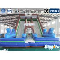 Quality Amusement Park Jumping Games Skull Inflatable Slides Double Lane Bouncer wholesale