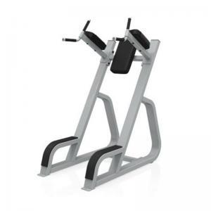 Quality Online Bodybuilding 1240*720*1600mm Leg Raise Machine wholesale