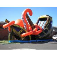 China Durable Pvc  Customized size Insane inflatable Slide Rental For Park ,Giant Commercial Inflatable Slide Rental on sale