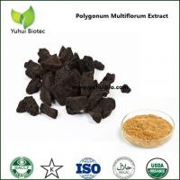 China fo ti extract powder,fo ti root extract,ho shou wu extract,polygonum multiflorum thunb on sale