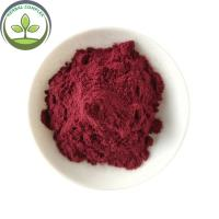 China Buy High Quality Black Carrot Juice Powder For Pigment on sale