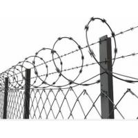 Quality Concertina Barbed Wire with Galvanized Zinc Coated Chain Link Fence for High Security wholesale