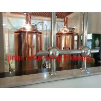 China 5bbl beer brewery machine 600l draft beer machine for 3 years warranty time on sale