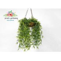 Quality Customized Steel Wire Hanging Flower Baskets , Hanging Plant Pots wholesale