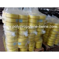 Quality UV 100% Polypropylene PP Baler Twine / Twisted Banana Twine For Packing Diameter 1-3mm wholesale