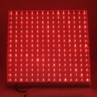 Quality Red / White / Yellow  LED Plant Growing Lights 120w / 300 watt / 90w with low energy wholesale