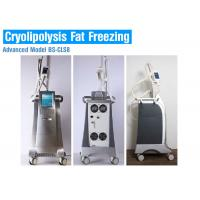 Quality Liposuction Cryolipolysis Body Slimming Machine , Fat Melting Machine CE Approved wholesale