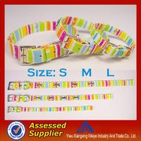 China Promotional item chromatic stripe dog collars and leashes with hight quality on sale