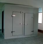 Ice Cream / Frozen Food Cold Storage Room With Swing Door , Copeland Scroll