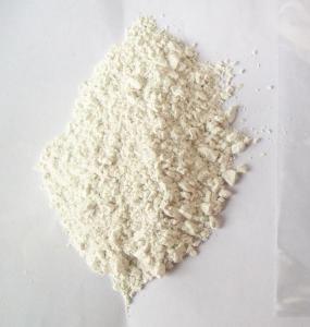 Quality Agrochemical Powder Carbendazim 95%TC  Fungicide  wholesale