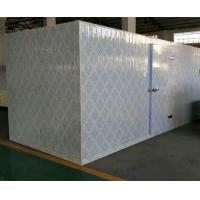 Quality Commercial Modular Cold Storage Room / Fish And Seafood Walk - In Freezer wholesale