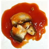 China 155g Canned Sardines Fish In Tomato Sauce on sale