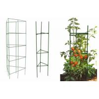 China Square Folding Tomato Cages on sale