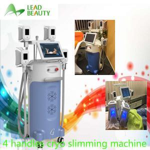 China Cryo slim freezer cryotherapy cool shape with 4 handles cryo fat freezing machine on sale