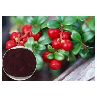 Quality Dark Red Powder Antifungal Plant Extracts PACs From Cranberry Anti Radiation wholesale