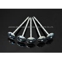 Fix Iron Sheet Zinc Plated Nails ,  Twisted Shank 3 Inch Roofing Nails