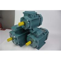 China Ac Electric Car Flange Mounted Motor IE 4 High Efficiency Low Energy Consumption on sale