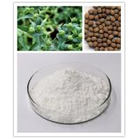 Quality CAS 30220-46-3 Ingenol Anti Cancer Euphorbia Source With HPLC Test 98% wholesale