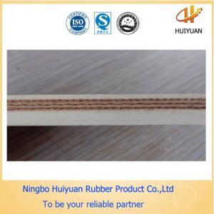 China Food Grade Conveyor Belts on sale