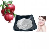 China Commercial 99% Plant Extract Powder Pomegranate Peel Extract Ellagic Acid on sale