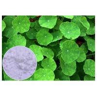 Quality Anti Inflammatory Gotu Kola Leaf Extract , Natural Centella Asiatica Leaf Extract wholesale
