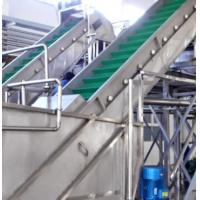 China Large Capacity Clapboard Elevating Conveyor Commercial Food Processing Equipment for Vegetable on sale