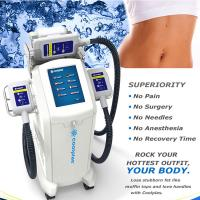 Quality Non Surgical Cryolipolysis Fat Freezing Machine / Body Slimming Equipment 230VAC 50Hz wholesale