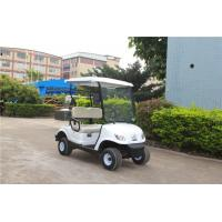 2 Person Mini Electric Golf Carts Motorised Golf Buggies With Cargo Box