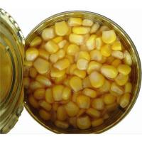 Quality Factory Price New Season Vegetarian Tinned Yellow Sweet Corn in Brine Professional Supplier wholesale
