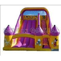 Quality Big Water Slide Inflatable (ZY-31079) wholesale